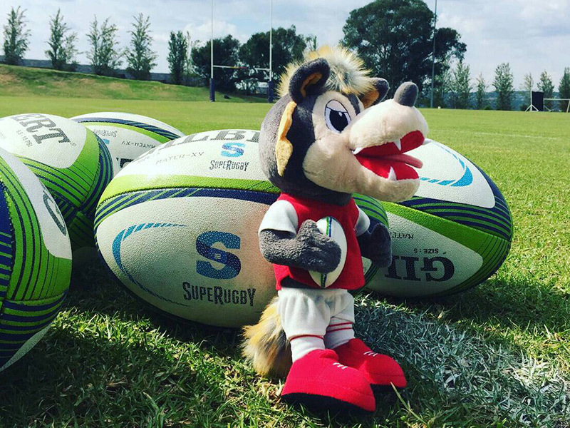 Large sunwolves mascot with balls 800