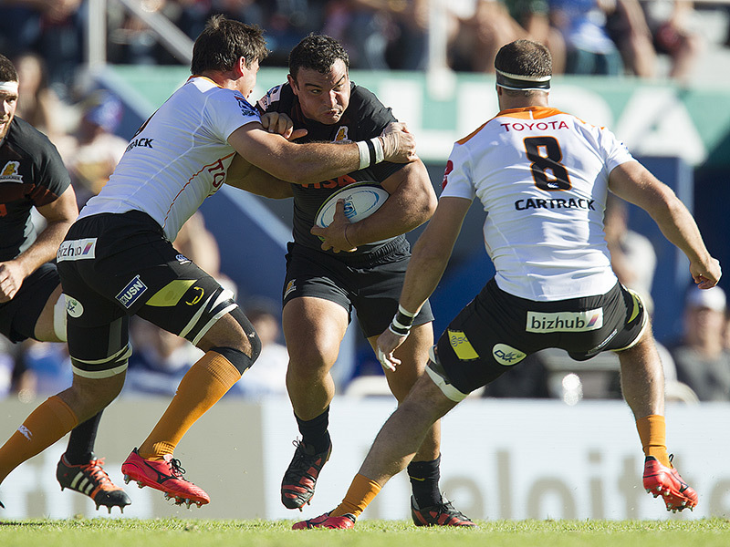Large jaguares v cheetahs match action 800