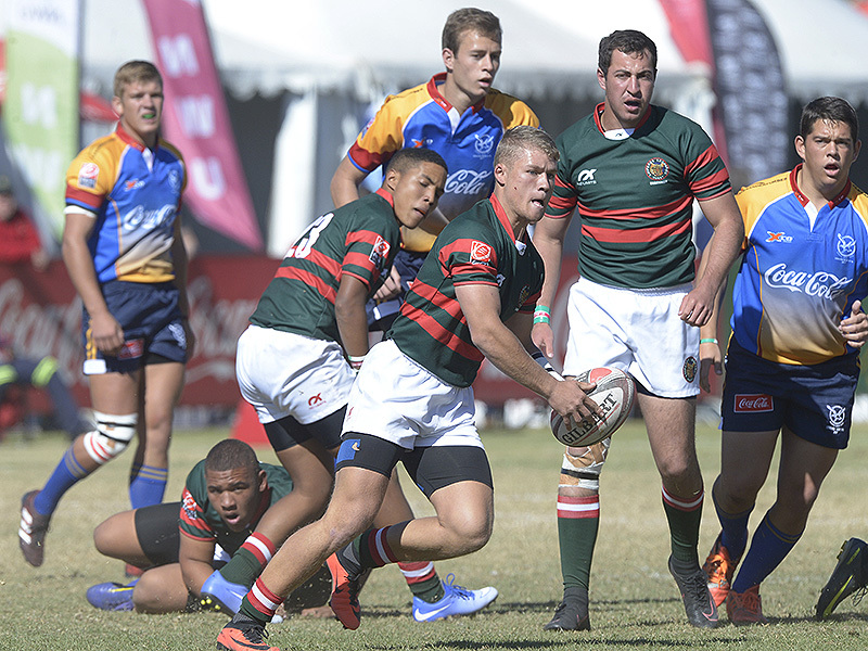 Large vihan muller leopards craven week 800
