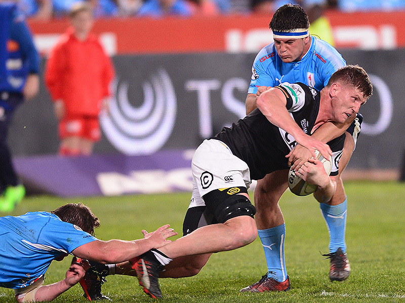 Large blue bulls v sharks 800