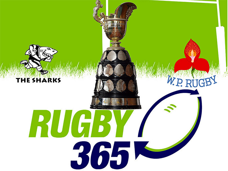 Large currie cup final 2017 800