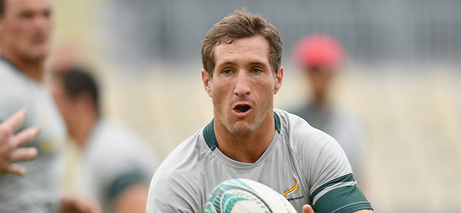Mc article johan goosen springboks 2018 800