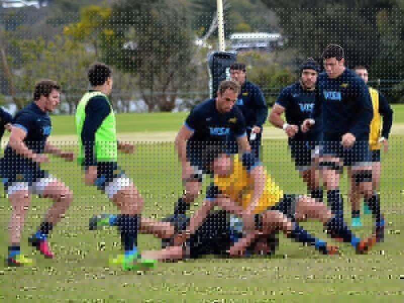 Cubelli called in to face Wallabies