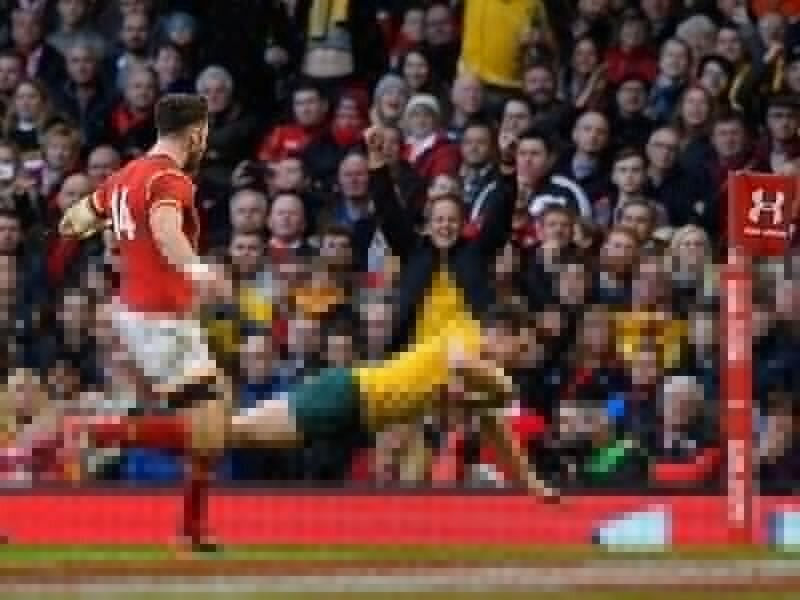 Cheika stays grounded after Wales mauling
