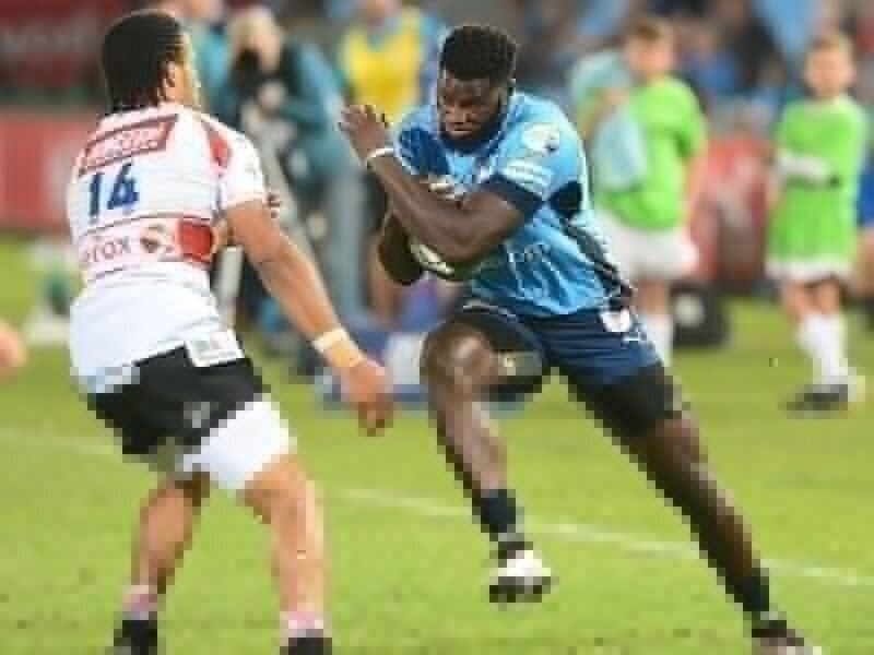 Bulls tackle Lions into submission
