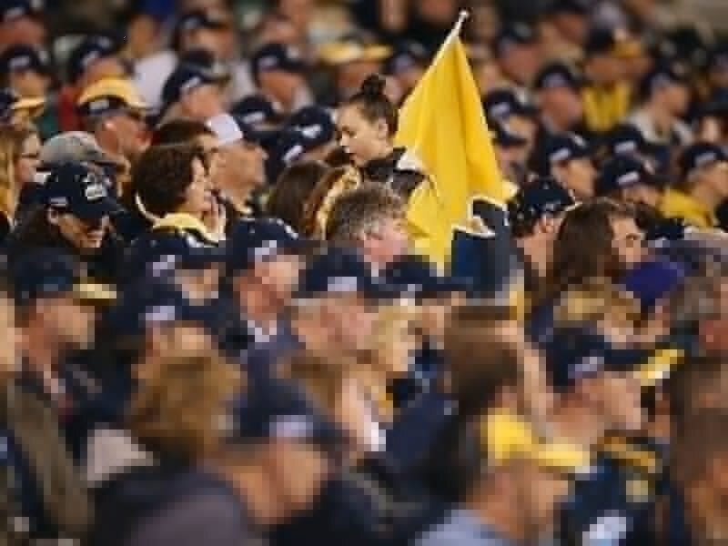 Brumbies get a new chairman
