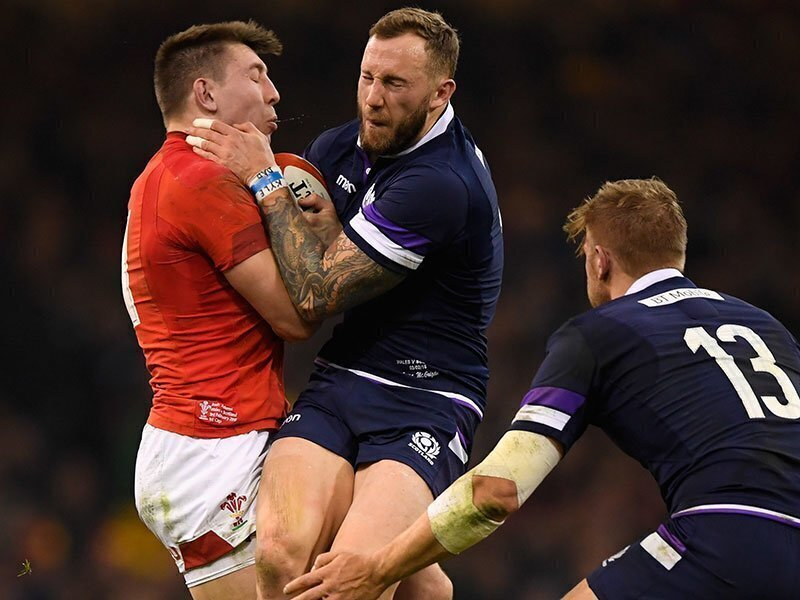 Sharks hold onto Scotland wing