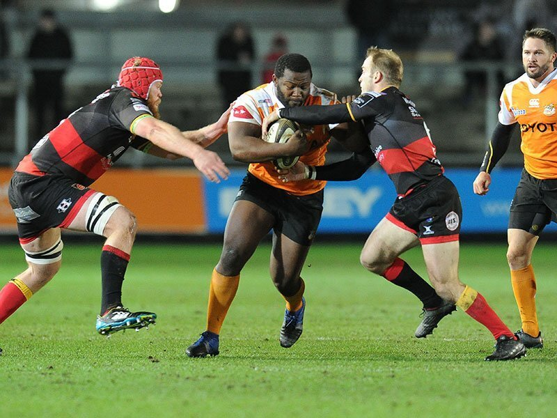 Cheetahs fight back to sink Dragons
