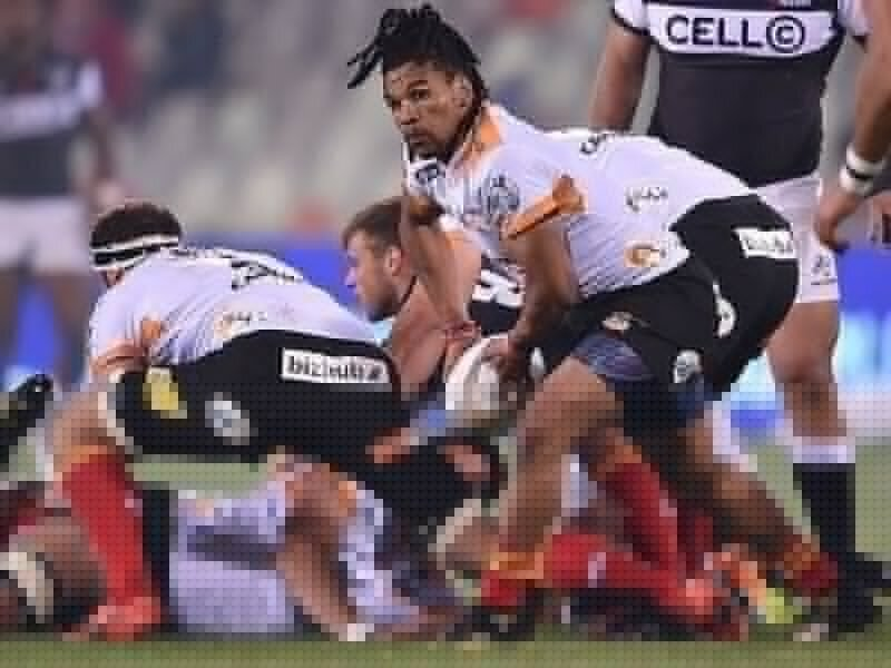 Cheetahs off to a flying start