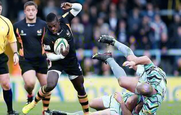 Wade stays is Wasps web