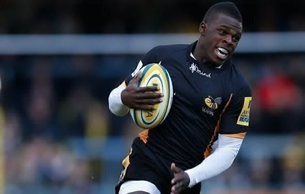 Wasps end Quins' winning streak