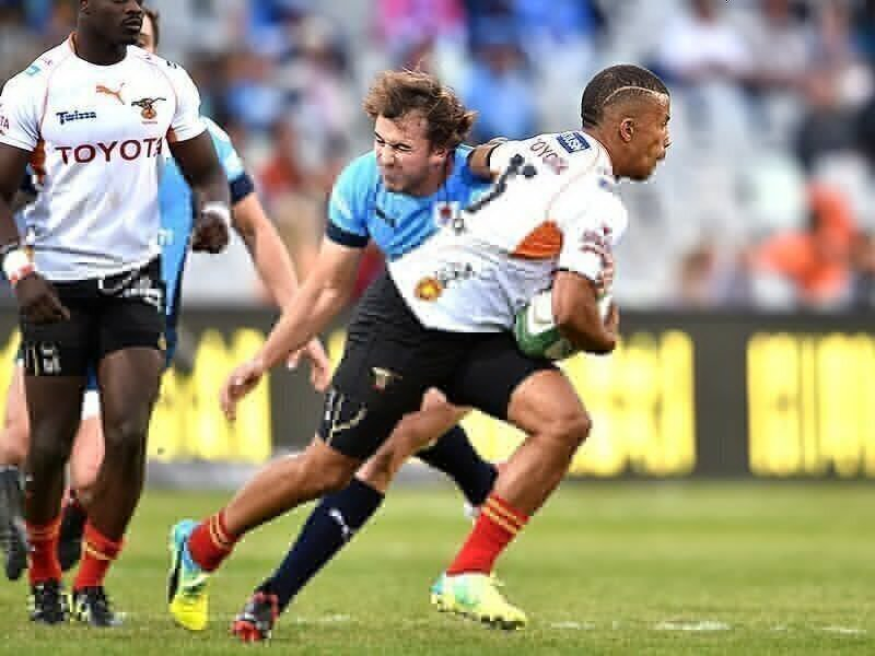 Cheetahs star set to join Scarlets
