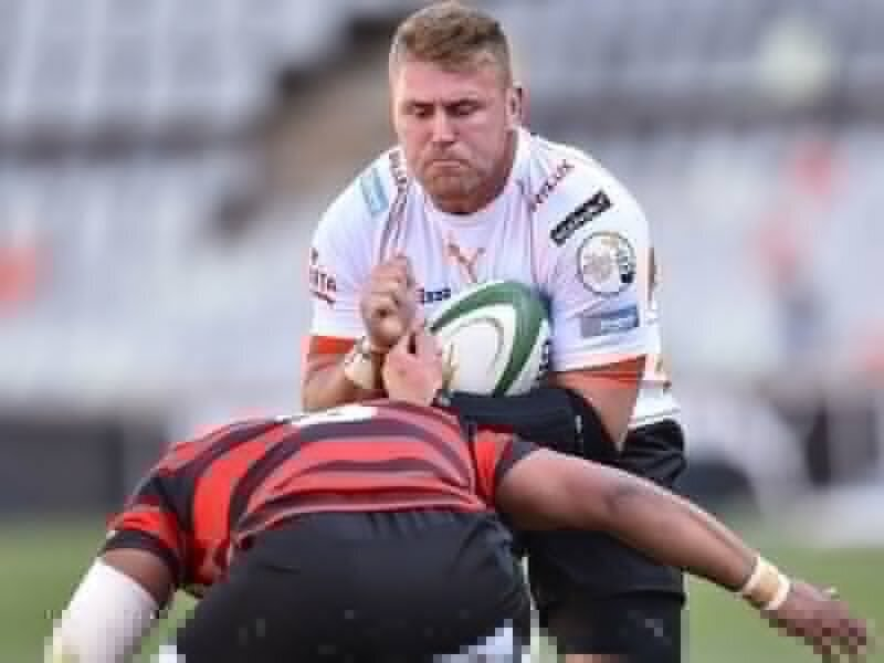 Cheetahs pull away from Kings