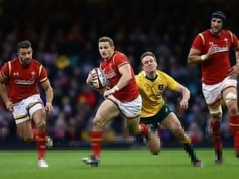 Wales' Amos out until New Year