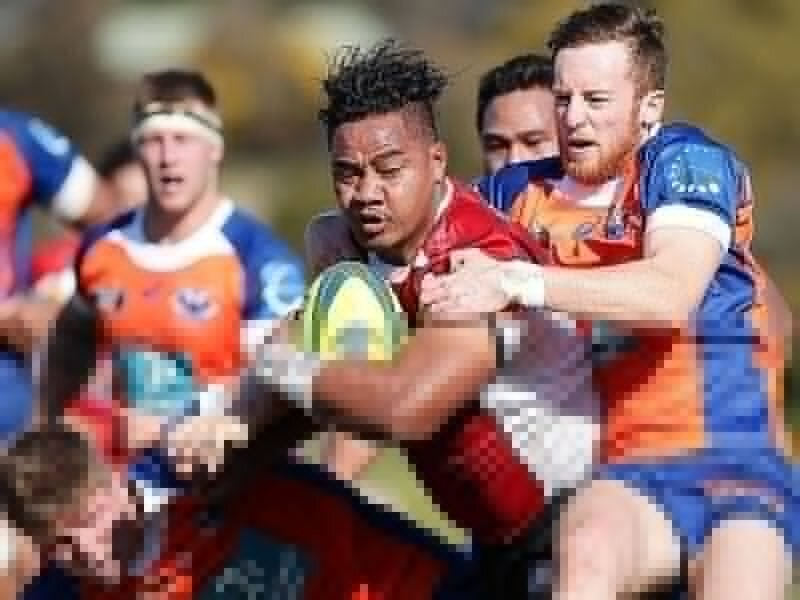 Try-feast at Concord Oval