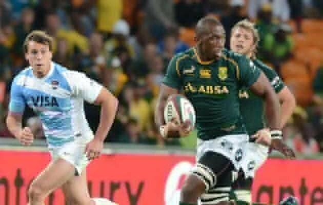 High praise for Bok bench