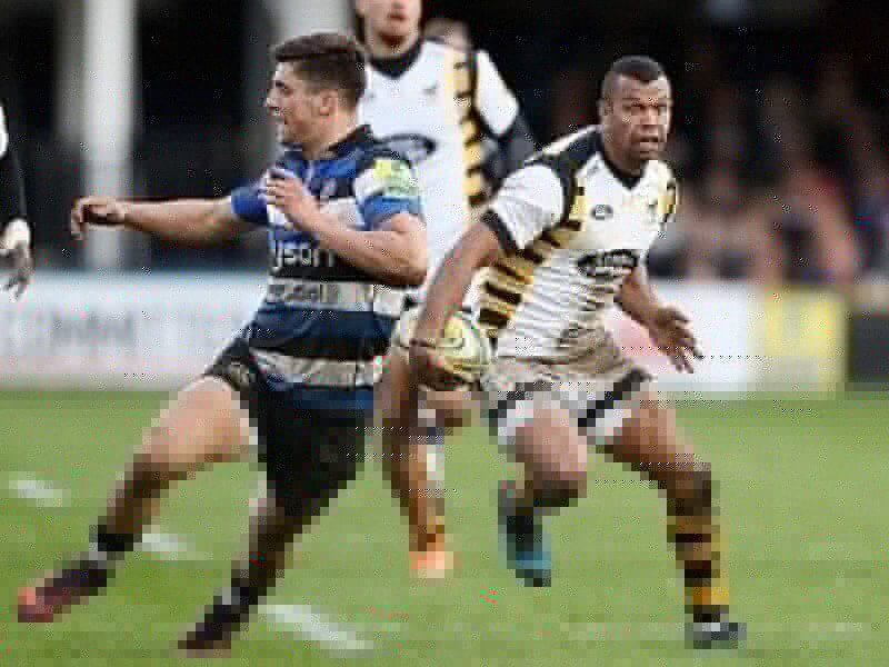 Beale stings for Wasps