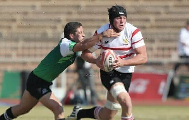 Feast of tries in Polokwane