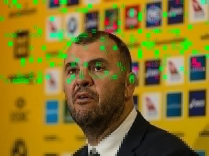 Cheika still sweating on swearing probe