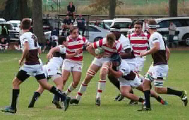 Michaelhouse's Rugby Round-up
