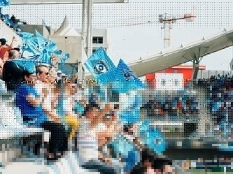 Du Plessis helps Montpellier end losing streak