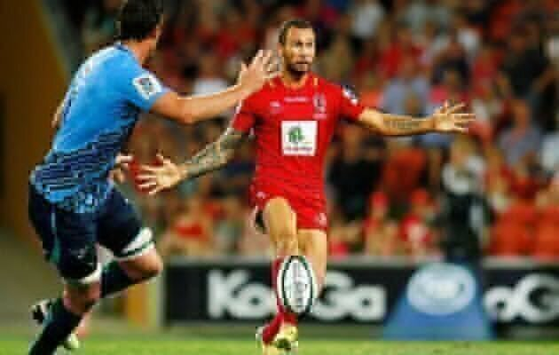 Cooper out of Wallaby frame