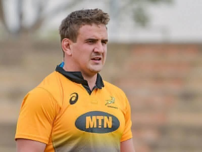 Bok duo to join Ackermann at Gloucester?
