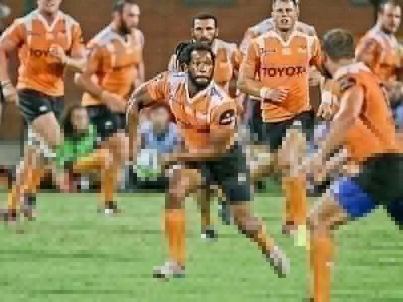 Cheetahs building a new innings