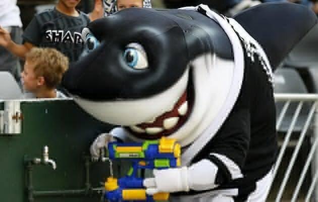 Sharkie goes high-tech