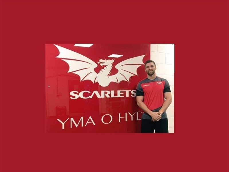 Aussie Rebel joins Scarlets in South Africa