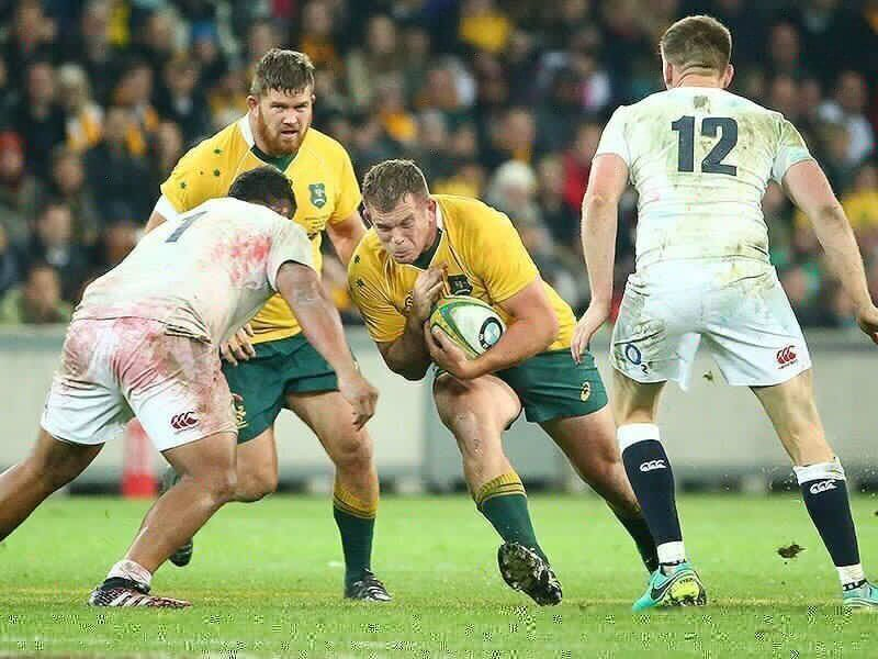 Wallaby prop makes Hurricanes Super cut