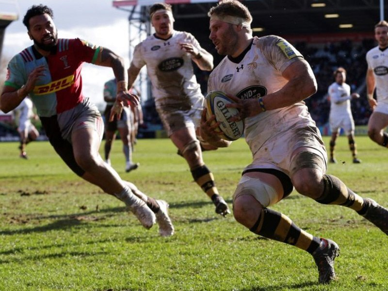 14-Man Wasps sting Harlequins