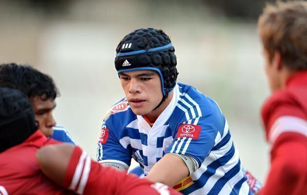 Golden Lions shine at U13 Sevens