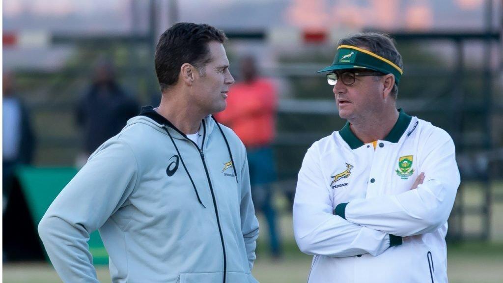 Swys quits Springboks
