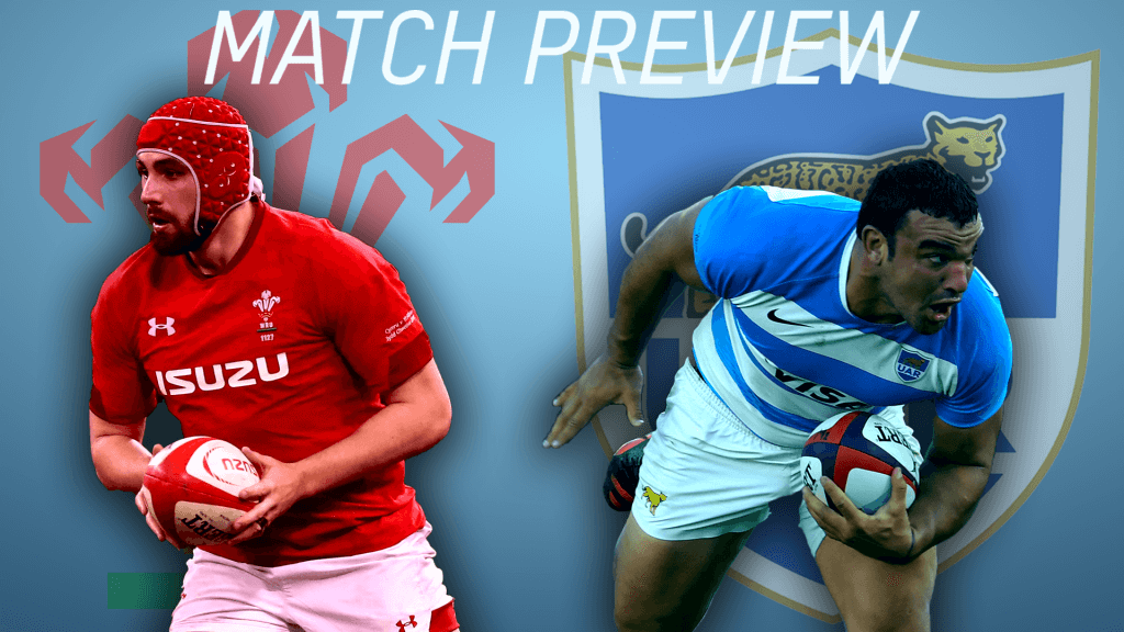 Preview: Argentina v Wales