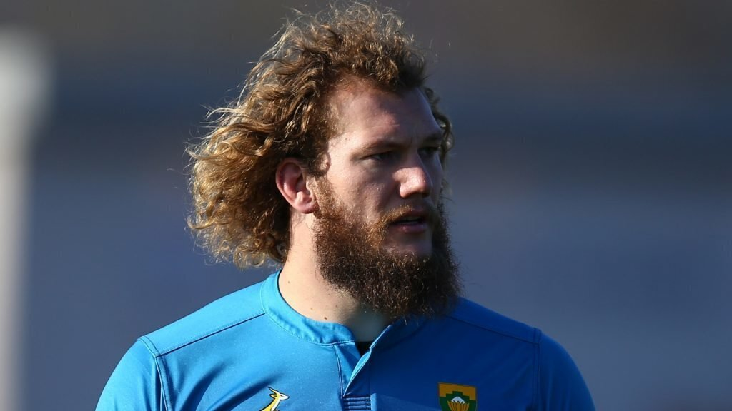 Brits picks Snyman's probable replacement in Bok squad