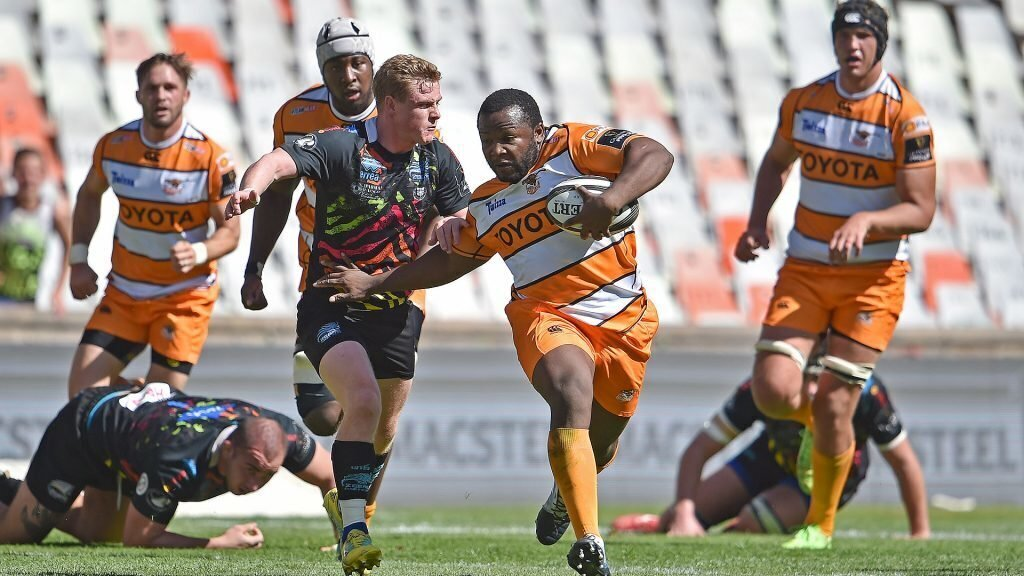 Cheetahs are back in the hunt