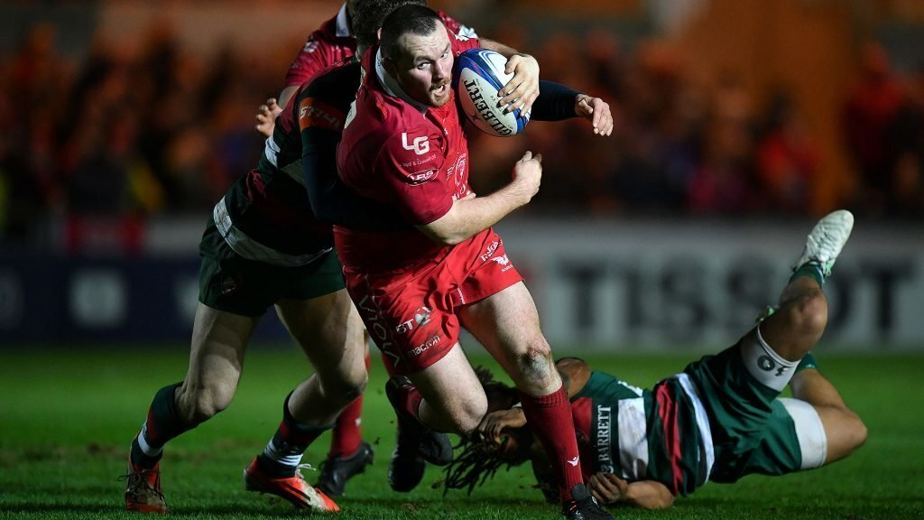 Scarlets rout Tigers