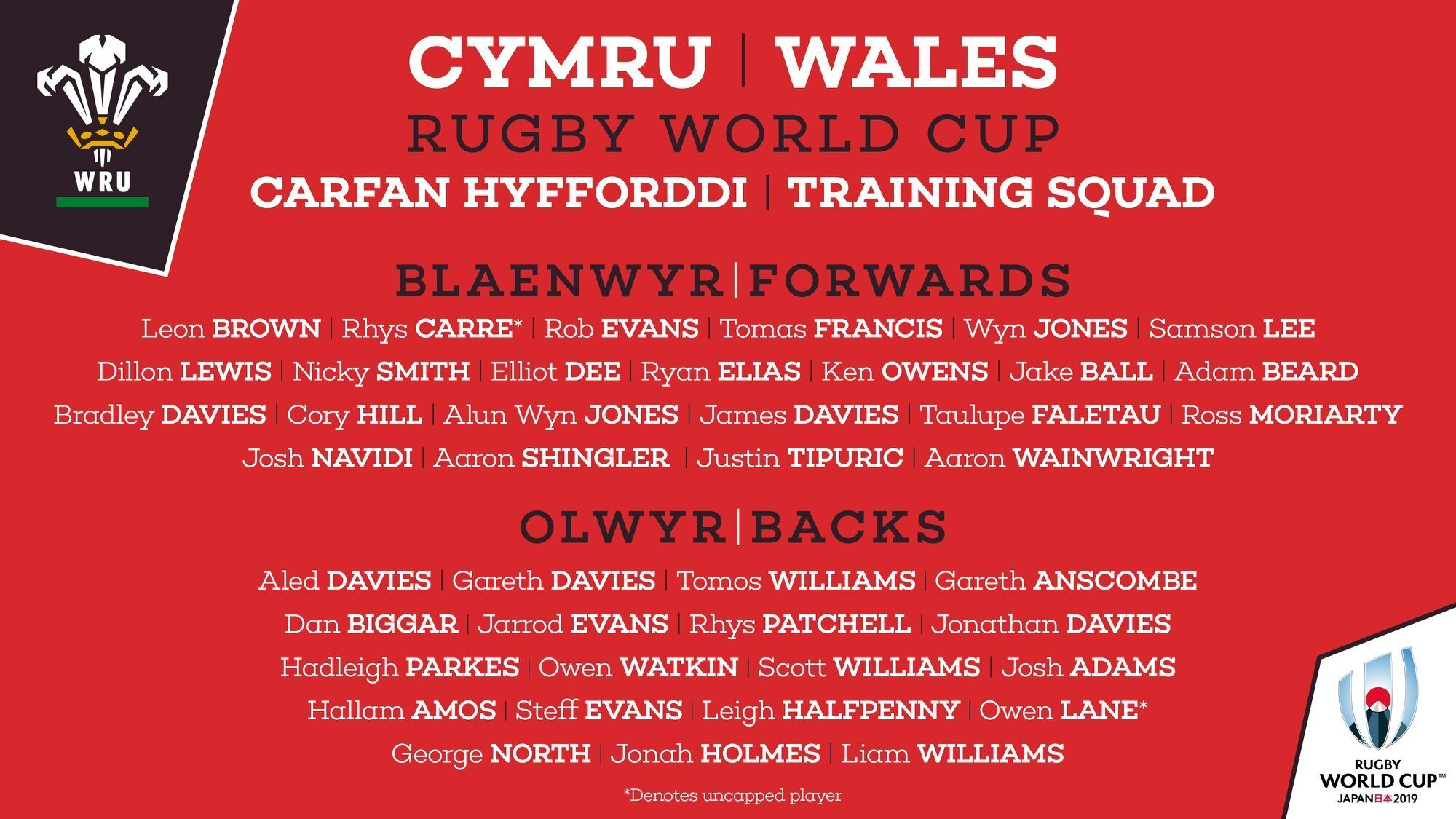 Welsh World Cup training squad