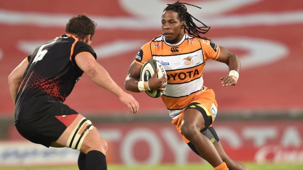 Cheetahs add to Kings' misery