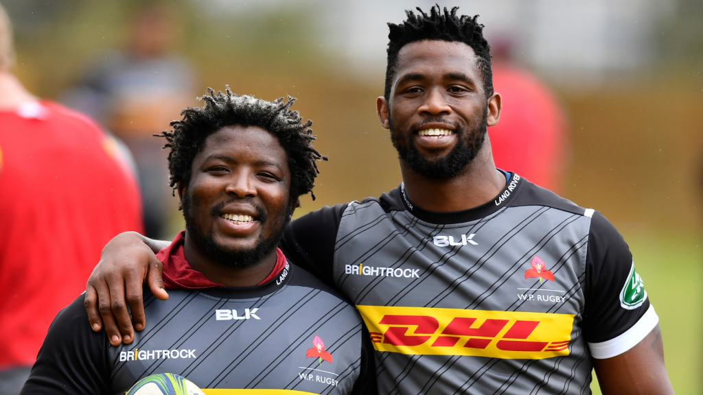 'From Gemsbok to Springbok'