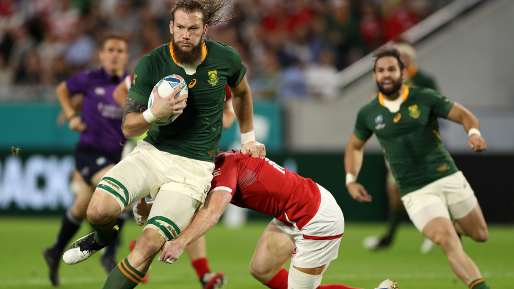 Player Ratings: The Snyman and Reinach show