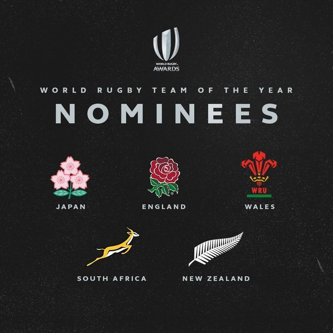 2019 Team of the Year nominees