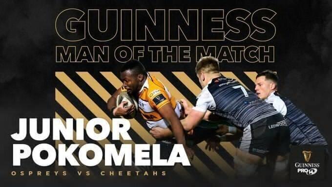 Junior Pokomela Cheetahs