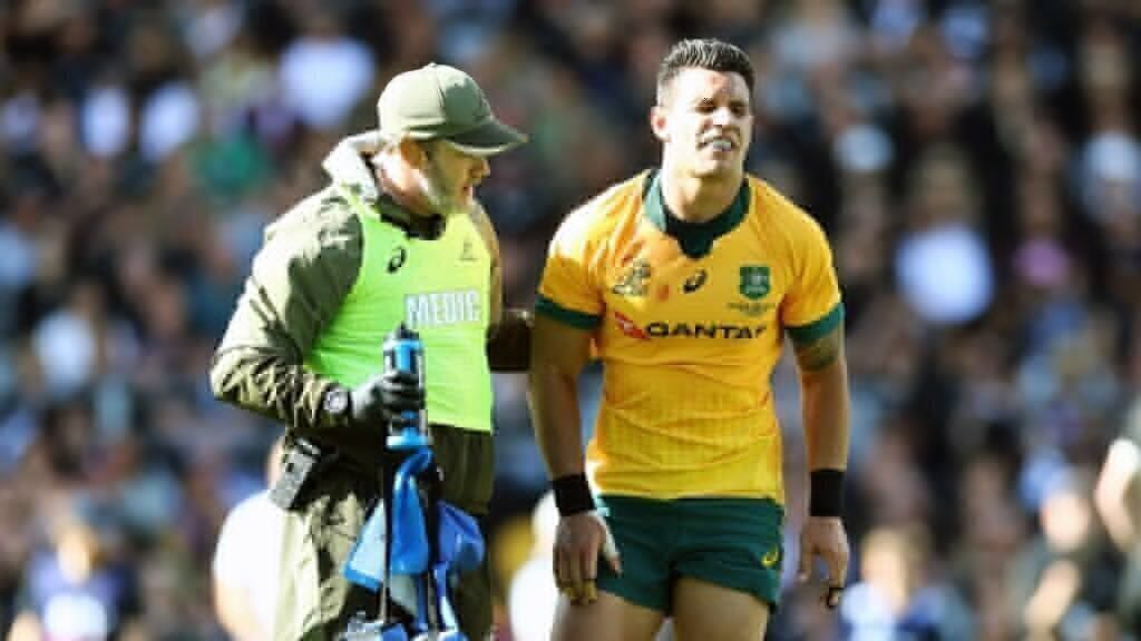 REPORT: Wallabies lose key player for the season