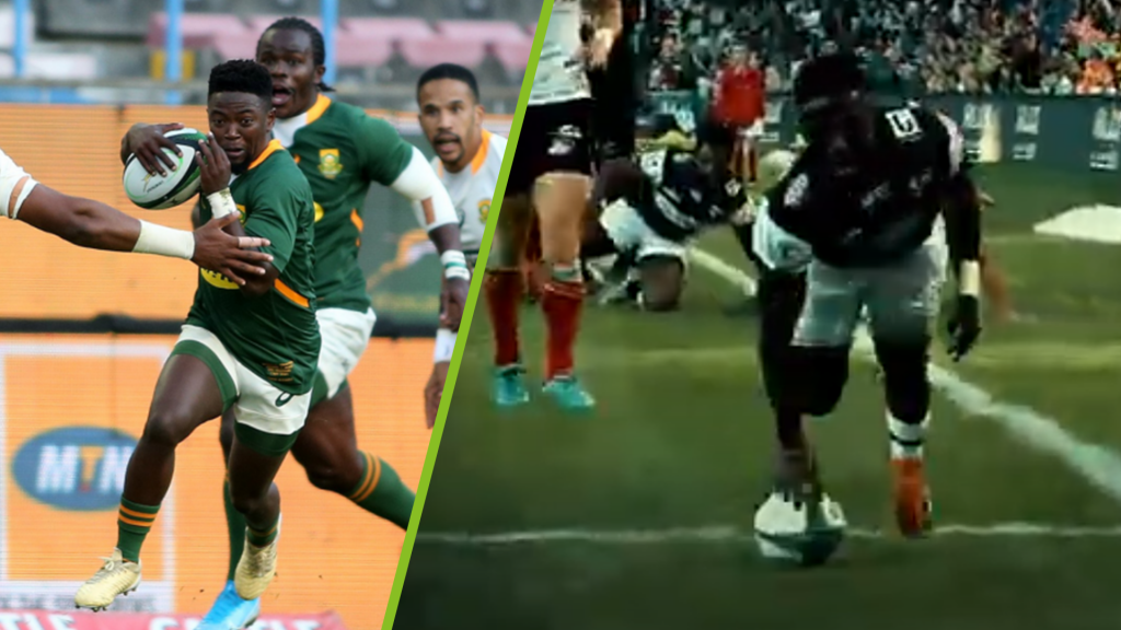 The Springboks' next big scrumhalf