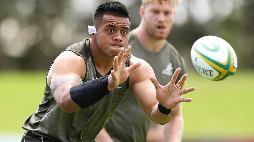 VIDEO: Can Wallabies escape from their 'dark' place?