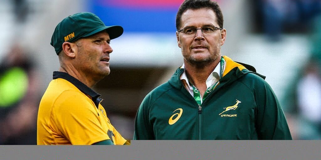 Springboks get a reality check ahead of B&I Lions series