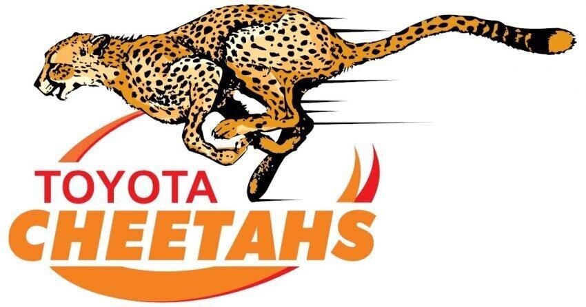 Cheetahs logo