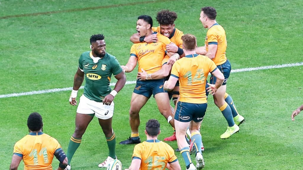 VIDEO: All the Rugby Champs highlights